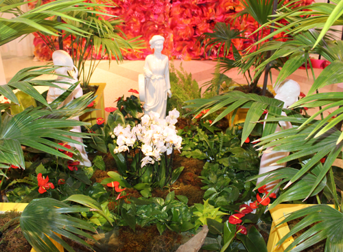 Rare orchids at Orchid Mania in Cleveland Botanical Garden