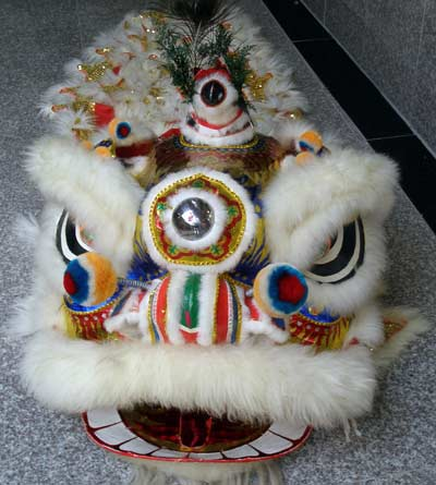 Lion Dance costume on floor