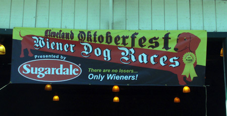 Wiener Dog Race at Cleveland Oktoberfest