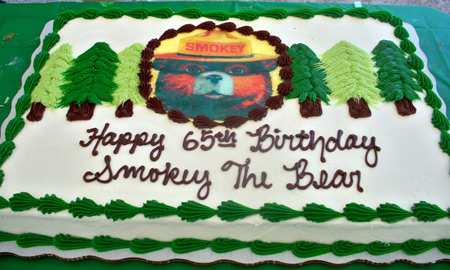 Smokey the Bear birthday cake