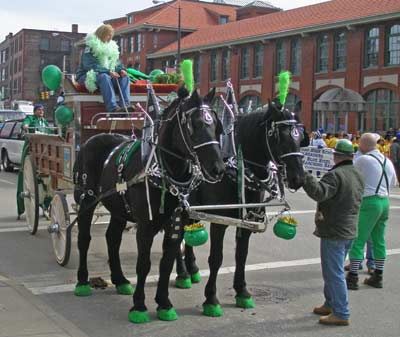 Lake Farm Horses in parade