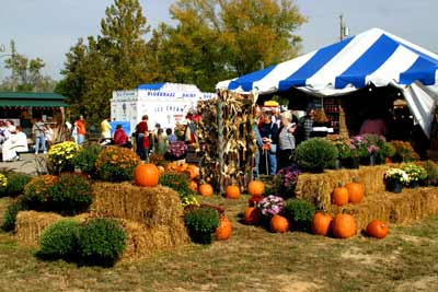 West Virginia Pumpkin Festival in Milton