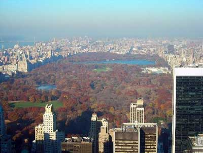 Central Park view from above