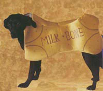 Dog dressed as milkbone
