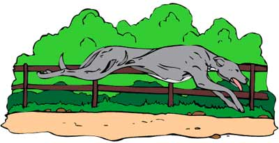 Greyhound dog clipart