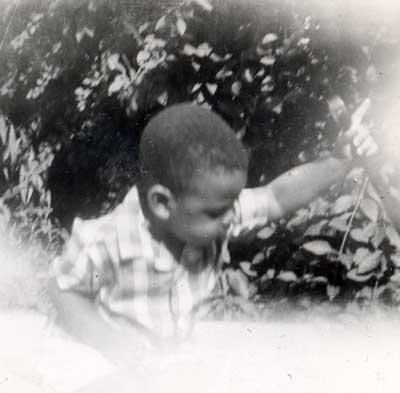 Young Harry Davis in garden at Grandma's House
